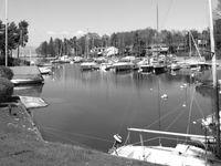 Port monochrome