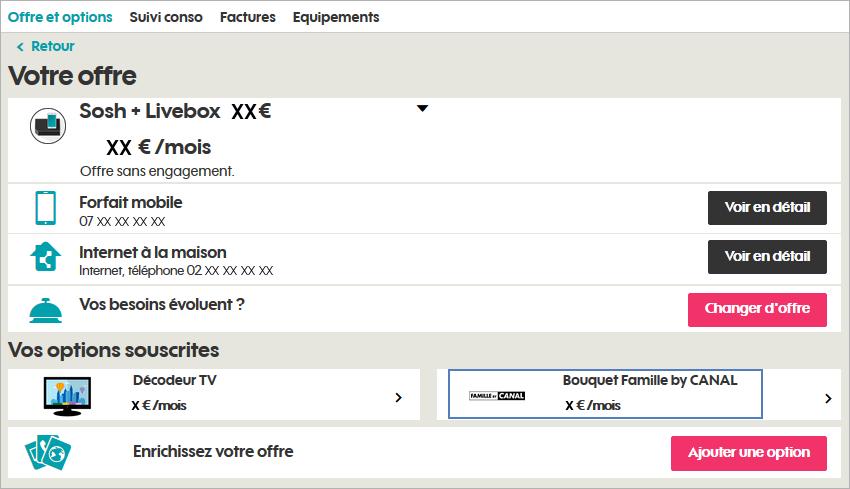 espace-client-offre-et-options-vos-options-souscrites-bouquet-famille-by-canal.png