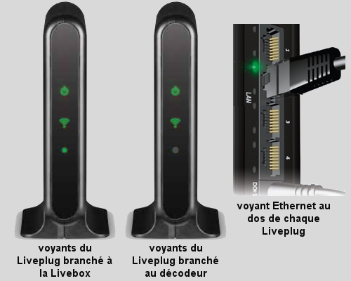 voyants-liveplug-wifi-duo.png